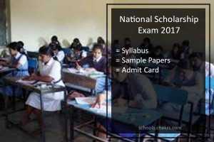 National Scholarship Exam (NSE) 2017 Syllabus- Sample Papers