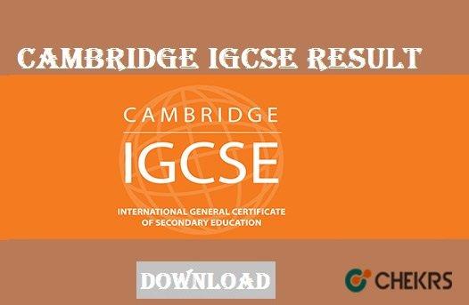 igcse result